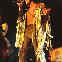 The Who: Roger Daltrey at the Plumpton Festival 1969